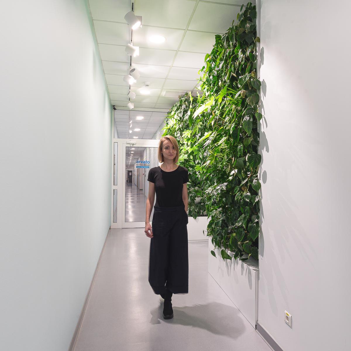 Ogrody Wertykalne w Arvato Bertelsmann pod Poznaniem
